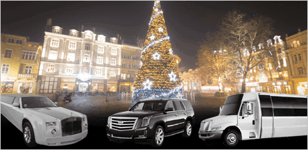 A1 Luxury Transport Christmas Light Tours