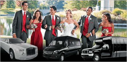 A1 Luxury Transport Prom Formal Limo Party Bus