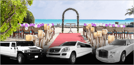 San Francisco Wedding Limo Car Service