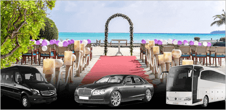 San Francisco Wedding Limo Service